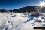 landschaft-winter-9