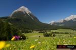 landschaft-sommer-11
