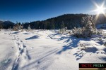 landschaft-winter-9